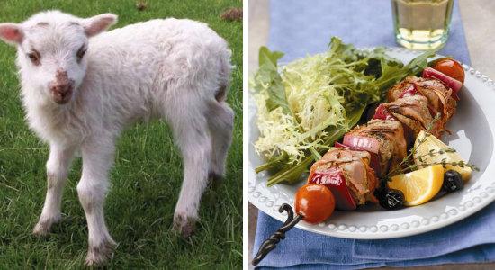 agneau-plat