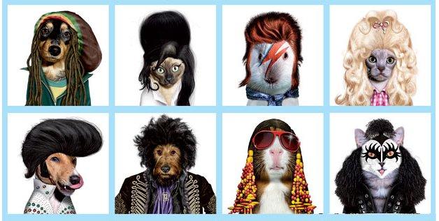 animaux-rockstars