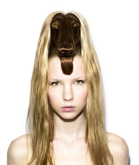 cheveux-chien