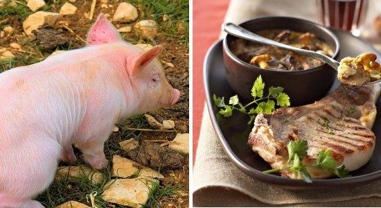 porc-plat