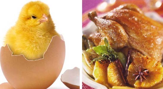 poulet-plat
