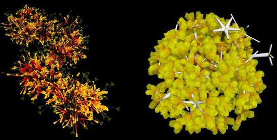 virus-bacterie