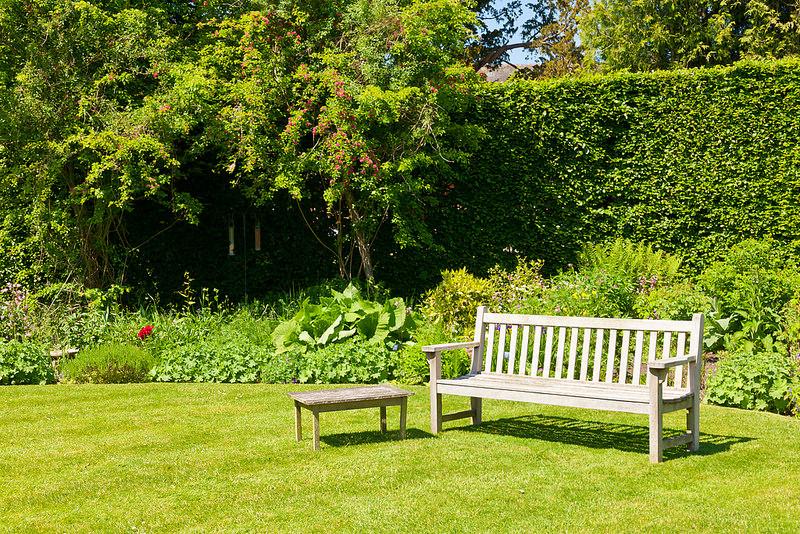 Jardin avec banc sur gazon
