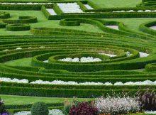 entretien d'un jardin